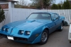 nhlfan's 1979 Trans Am by platinumnj1
