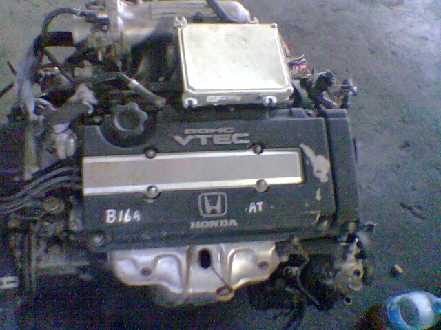 B16as