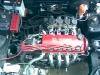 Fully Built D16z6 W/ Mikuni Itb's!