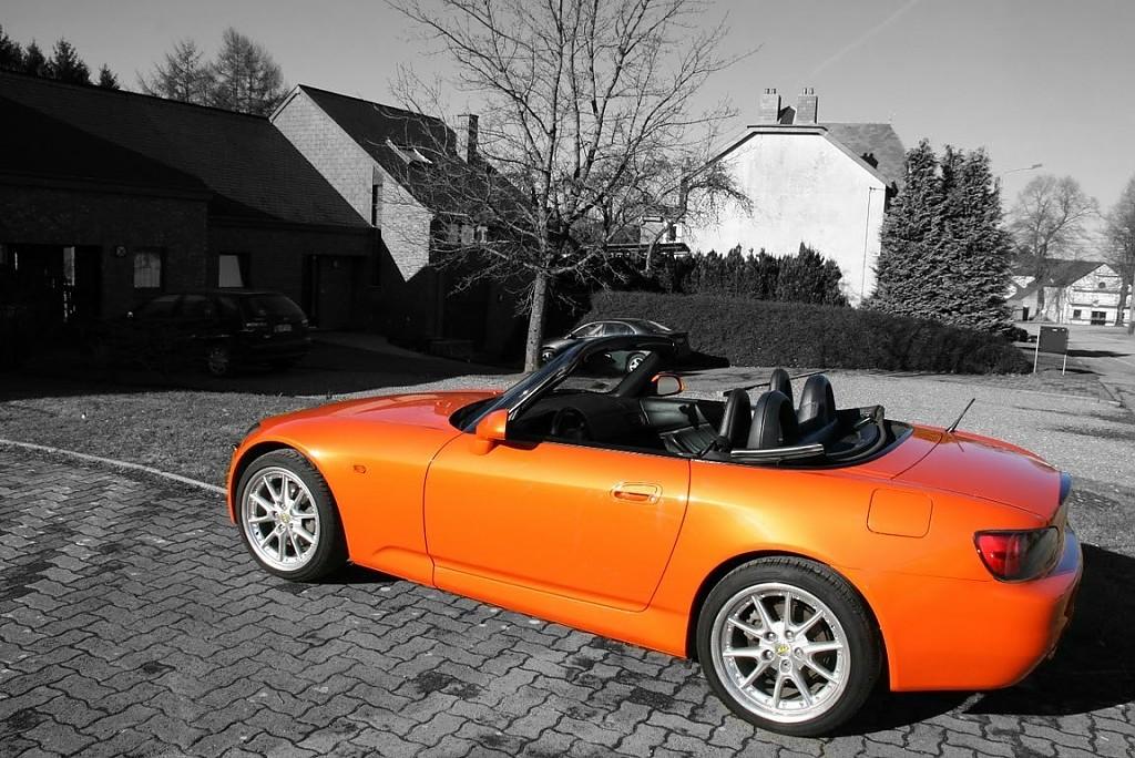 Arancio Borealis