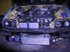 my lil turbo rex